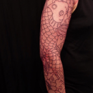 Todays work - koi sleeve started by Kanae