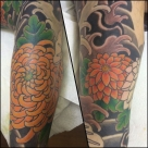 Today's work by Kanae - colours started on Koi and Chrysanthemum sleeve. Work in progress